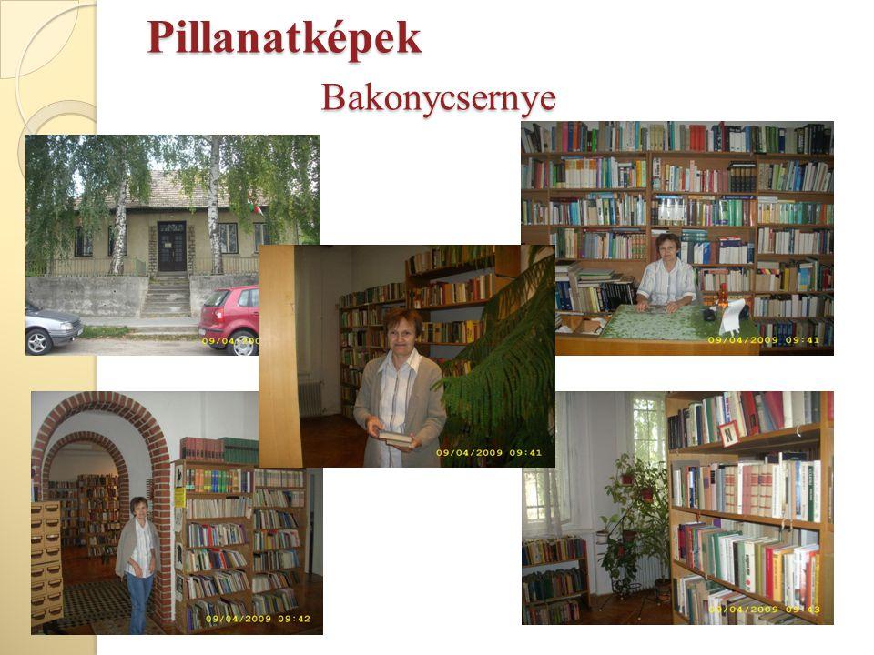 Pillanatképek Bakonycsernye