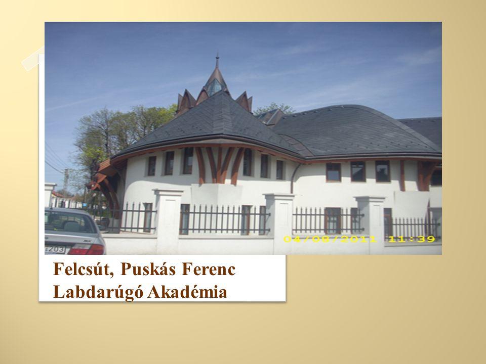 Felcsút, Puskás Ferenc Labdarúgó Akadémia