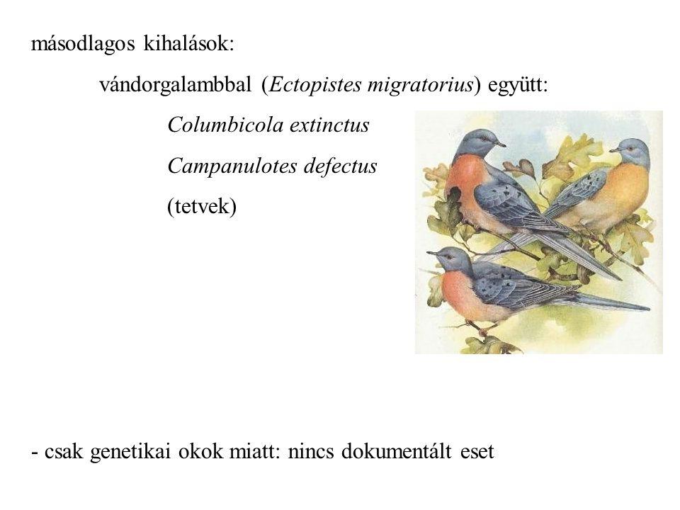 másodlagos kihalások: vándorgalambbal (Ectopistes migratorius) együtt: Columbicola extinctus Campanulotes defectus (tetvek) - csak genetikai okok miat