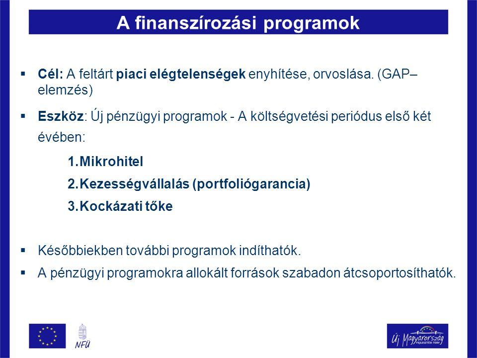 A finanszírozási programok  Cél: A feltárt piaci elégtelenségek enyhítése, orvoslása. (GAP– elemzés)  Eszköz: Új pénzügyi programok - A költségvetés