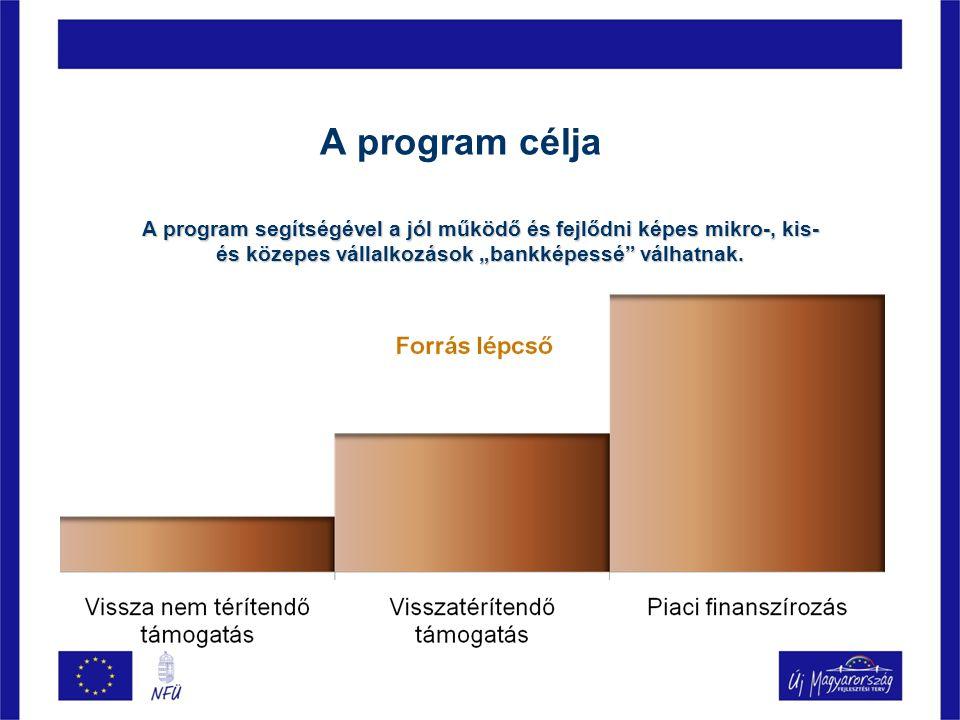 """A program célja A program segítségével a jól működő és fejlődni képes mikro-, kis- és közepes vállalkozások """"bankképessé válhatnak."""