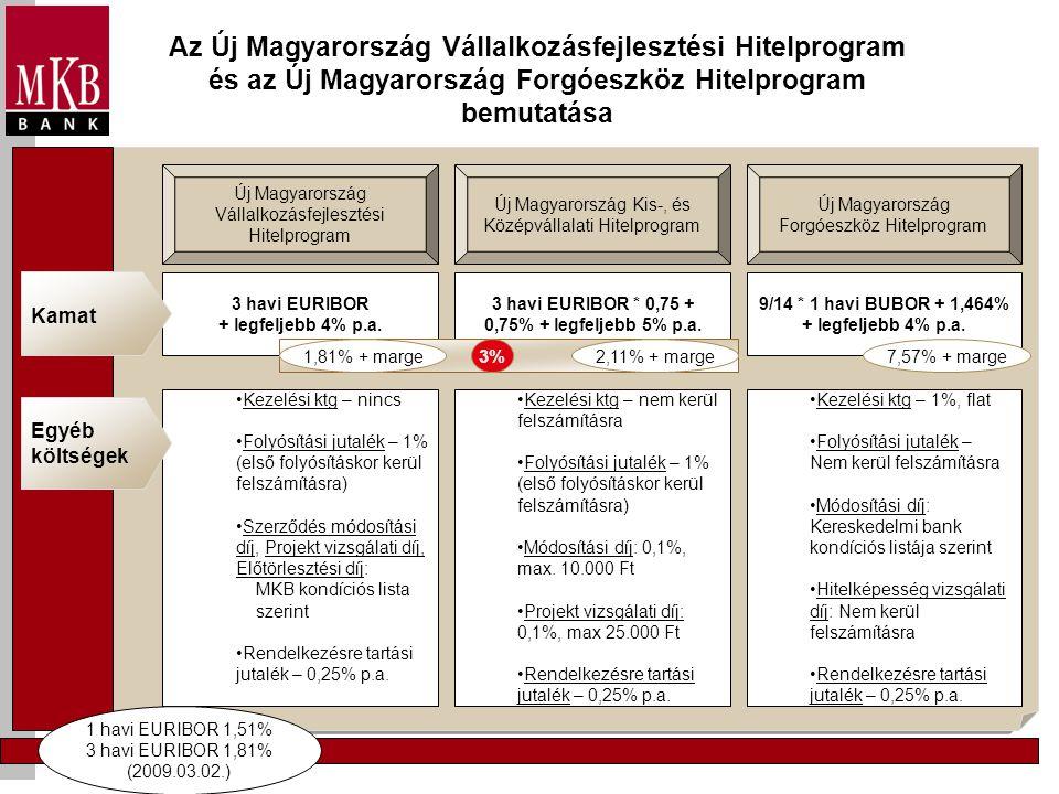 Az Új Magyarország Vállalkozásfejlesztési Hitelprogram és az Új Magyarország Forgóeszköz Hitelprogram bemutatása Új Magyarország Vállalkozásfejlesztési Hitelprogram Új Magyarország Forgóeszköz Hitelprogram Új Magyarország Kis-, és Középvállalati Hitelprogram 3 havi EURIBOR * 0,75 + 0,75% + legfeljebb 5% p.a.