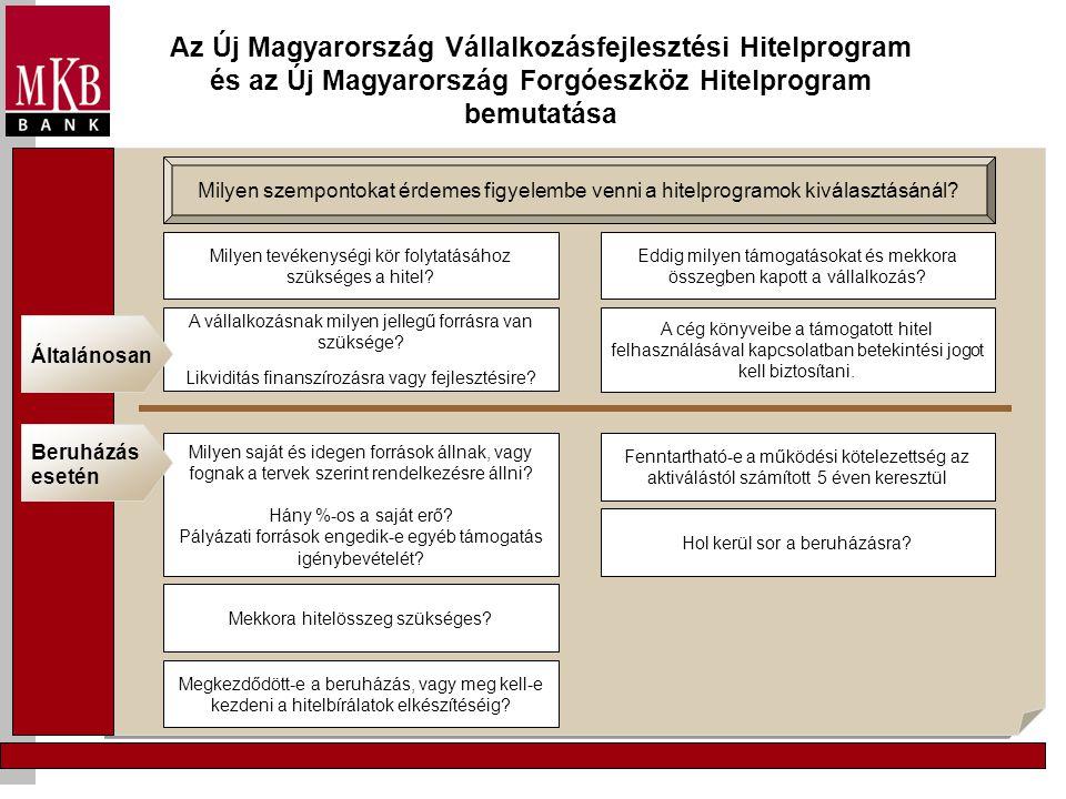 Az Új Magyarország Vállalkozásfejlesztési Hitelprogram és az Új Magyarország Forgóeszköz Hitelprogram bemutatása Milyen szempontokat érdemes figyelemb