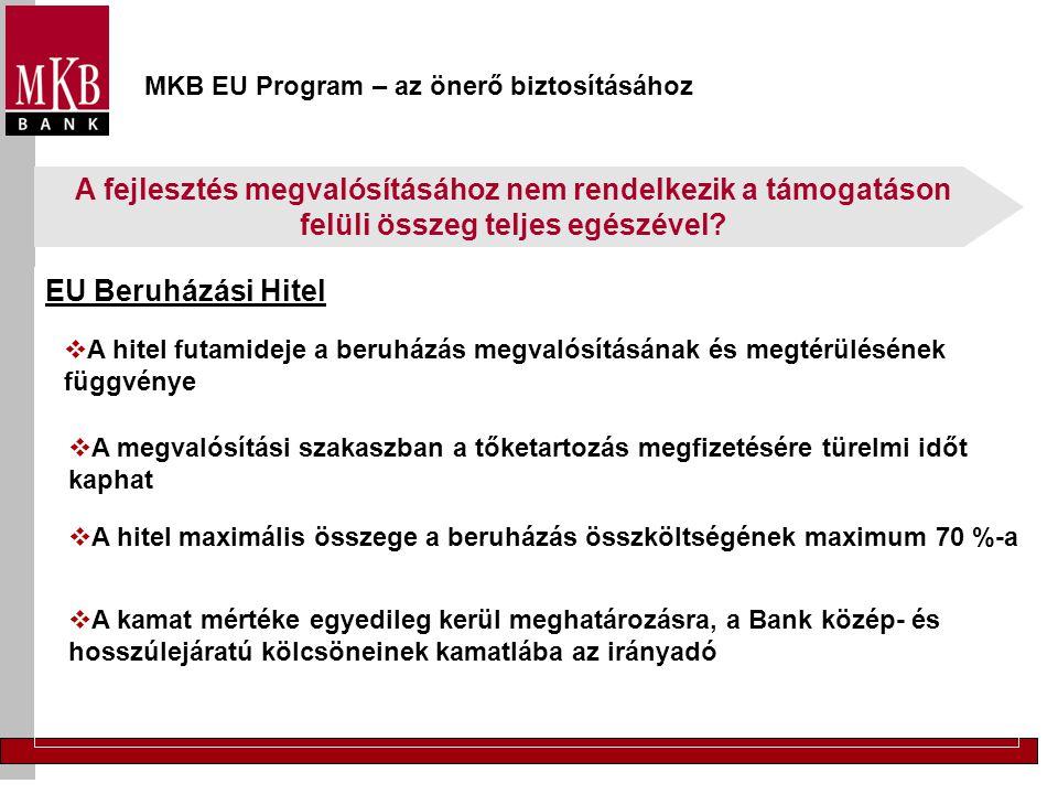 MKB EU Program – az önerő biztosításához EU Beruházási Hitel  A hitel futamideje a beruházás megvalósításának és megtérülésének függvénye  A megvalósítási szakaszban a tőketartozás megfizetésére türelmi időt kaphat  A hitel maximális összege a beruházás összköltségének maximum 70 %-a  A kamat mértéke egyedileg kerül meghatározásra, a Bank közép- és hosszúlejáratú kölcsöneinek kamatlába az irányadó A fejlesztés megvalósításához nem rendelkezik a támogatáson felüli összeg teljes egészével