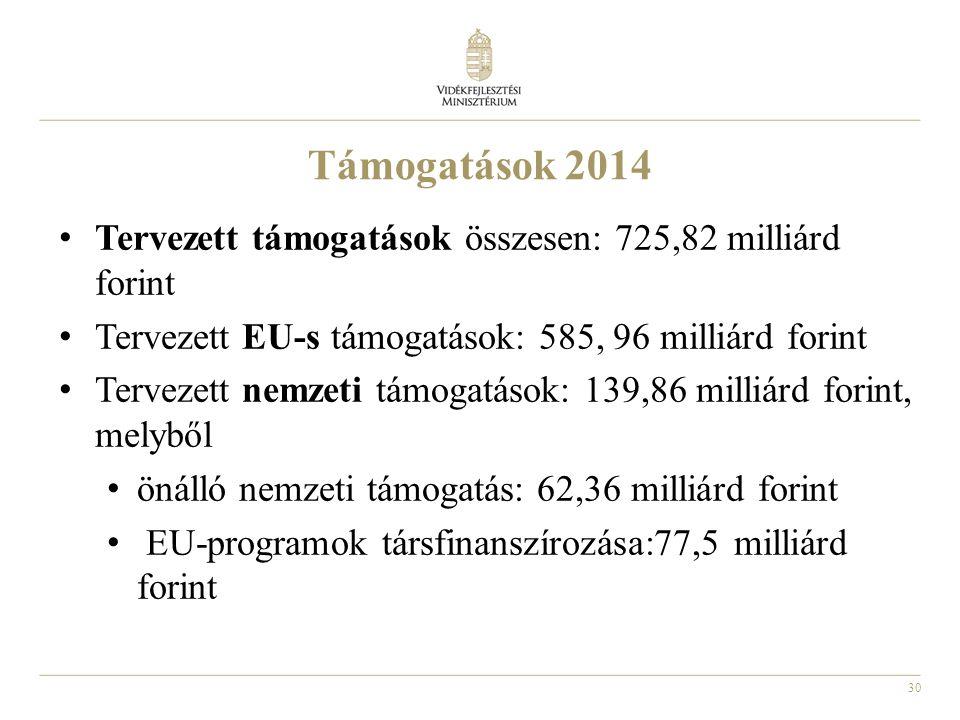 30 Támogatások 2014 • Tervezett támogatások összesen: 725,82 milliárd forint • Tervezett EU-s támogatások: 585, 96 milliárd forint • Tervezett nemzeti