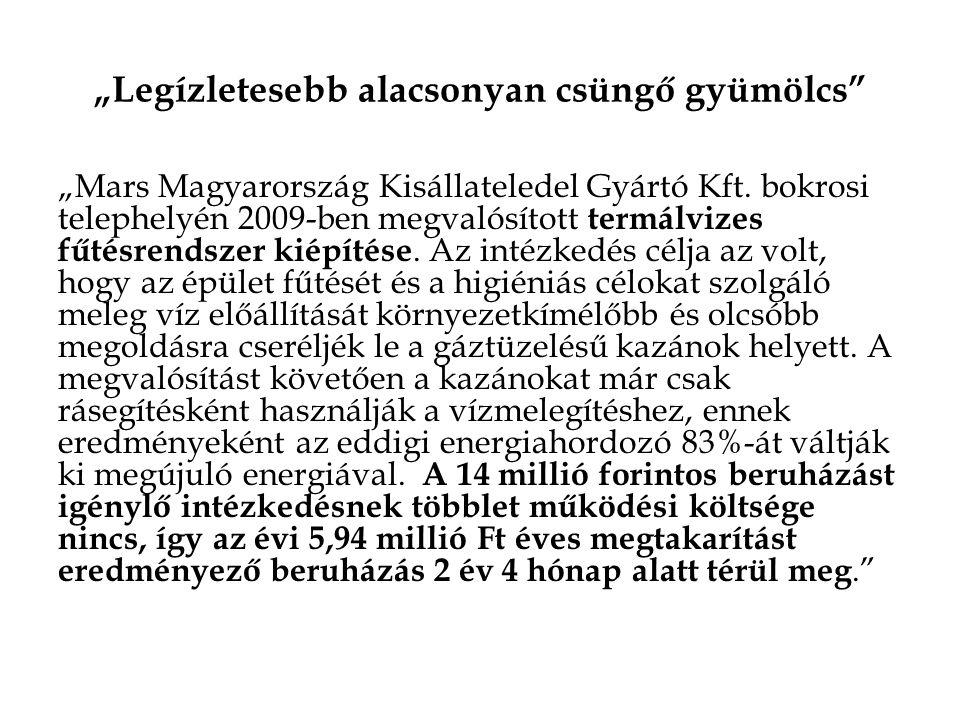 """""""Legízletesebb alacsonyan csüngő gyümölcs"""" """"Mars Magyarország Kisállateledel Gyártó Kft. bokrosi telephelyén 2009-ben megvalósított termálvizes fűtésr"""