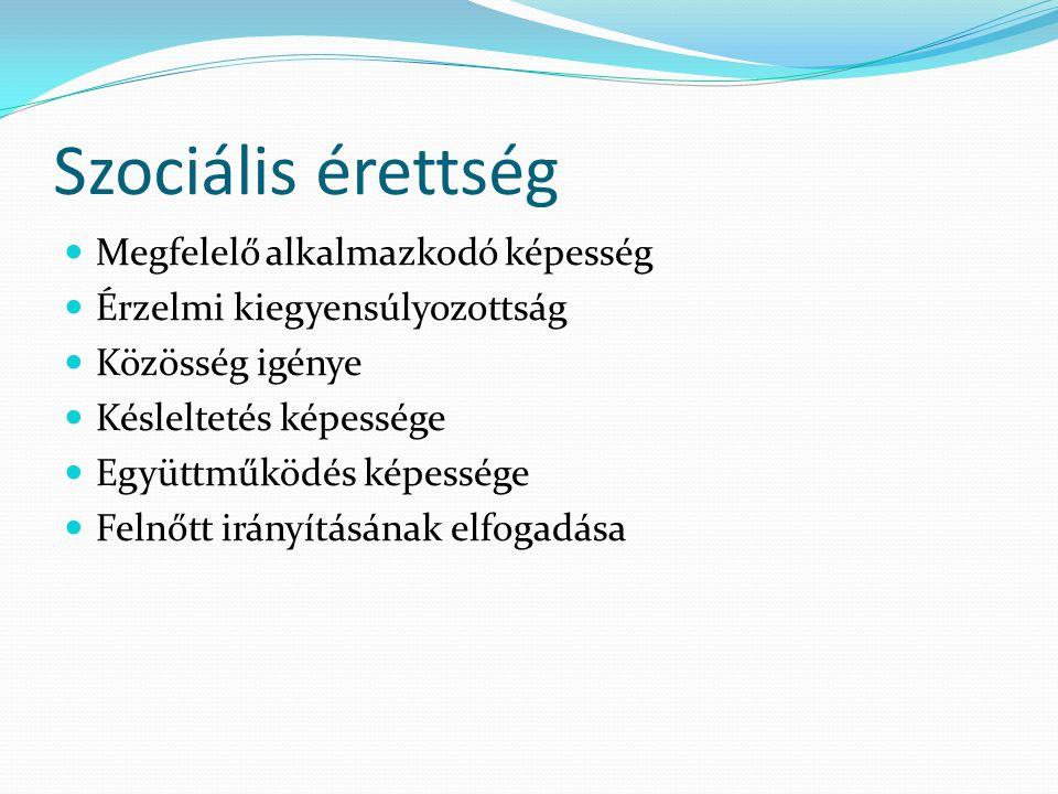 Szociális érettség  Megfelelő alkalmazkodó képesség  Érzelmi kiegyensúlyozottság  Közösség igénye  Késleltetés képessége  Együttműködés képessége