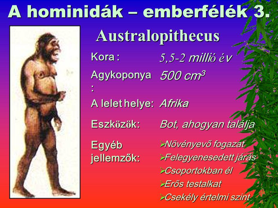 A Rudapithecus magyarországi lelőhelye