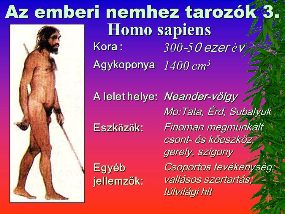 A Homo erectus magyarországi lelőhelye