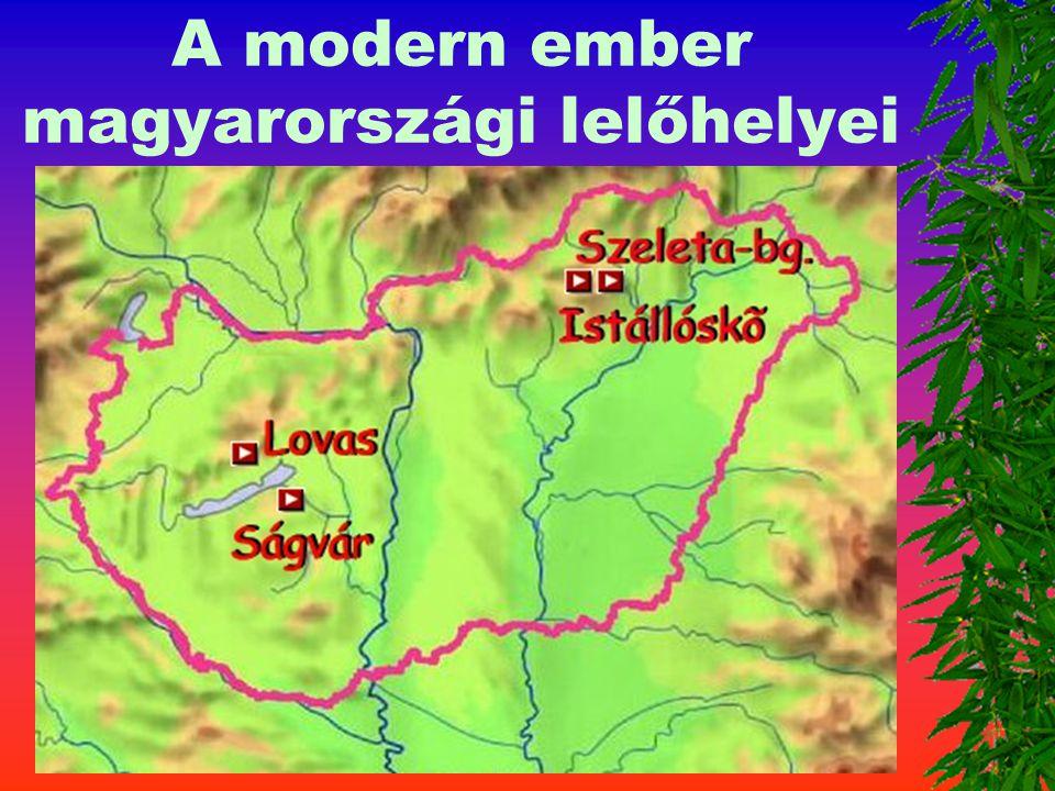 Az emberi nemhez tarozók 4. Homo sapiens sapiens Kora : 100 - 3 0 ezer é v Agykoponya 1425 cm 3 A lelet helye: Cro-Magnon Istállóskő, Szeleta-barlang,