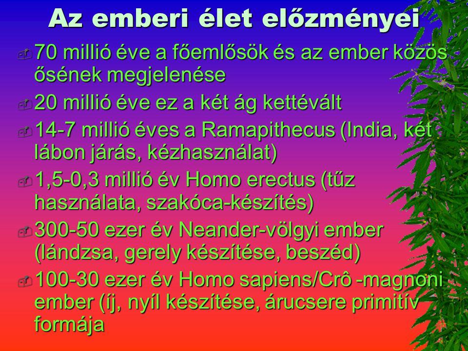 Az emberi élet előzményei  70 millió éve a főemlősök és az ember közös ősének megjelenése  20 millió éve ez a két ág kettévált  14-7 millió éves a Ramapithecus (India, két lábon járás, kézhasználat)  1,5-0,3 millió év Homo erectus (tűz használata, szakóca-készítés)  300-50 ezer év Neander-völgyi ember (lándzsa, gerely készítése, beszéd)  100-30 ezer év Homo sapiens/Crô -magnoni ember (íj, nyíl készítése, árucsere primitív formája
