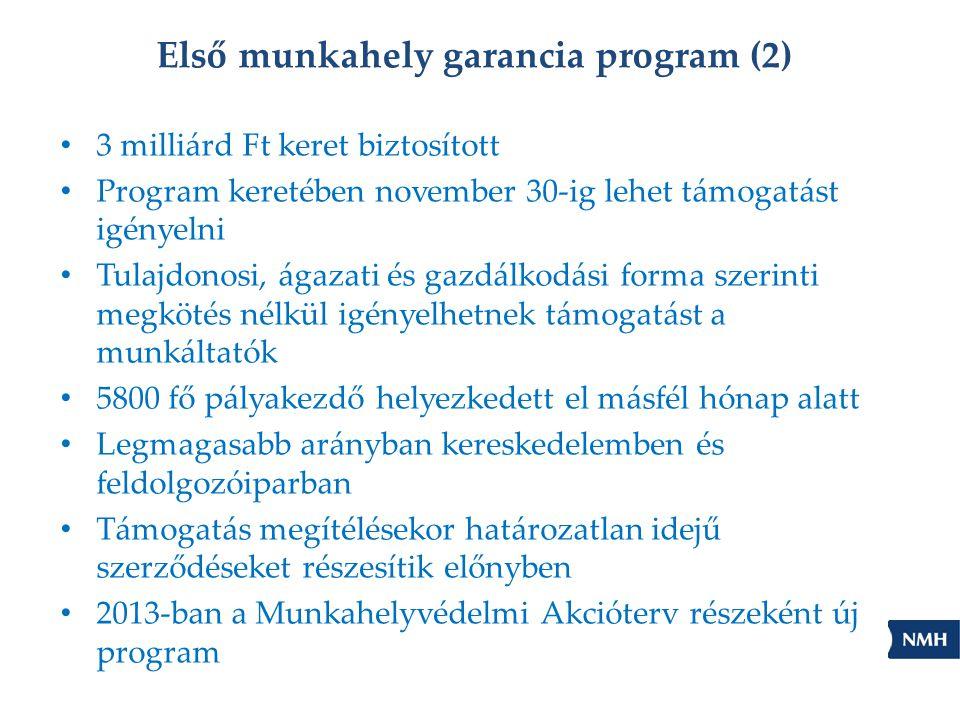 Első munkahely garancia program (2) • 3 milliárd Ft keret biztosított • Program keretében november 30-ig lehet támogatást igényelni • Tulajdonosi, ágazati és gazdálkodási forma szerinti megkötés nélkül igényelhetnek támogatást a munkáltatók • 5800 fő pályakezdő helyezkedett el másfél hónap alatt • Legmagasabb arányban kereskedelemben és feldolgozóiparban • Támogatás megítélésekor határozatlan idejű szerződéseket részesítik előnyben • 2013-ban a Munkahelyvédelmi Akcióterv részeként új program