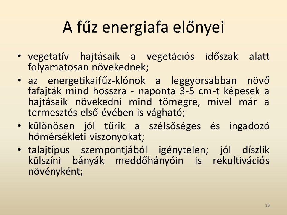 A fűz energiafa előnyei • vegetatív hajtásaik a vegetációs időszak alatt folyamatosan növekednek; • az energetikaifűz-klónok a leggyorsabban növő fafa