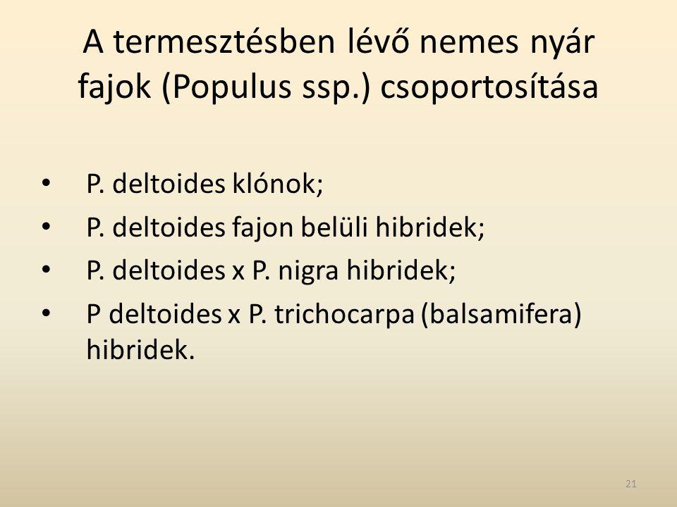 A termesztésben lévő nemes nyár fajok (Populus ssp.) csoportosítása • P. deltoides klónok; • P. deltoides fajon belüli hibridek; • P. deltoides x P. n