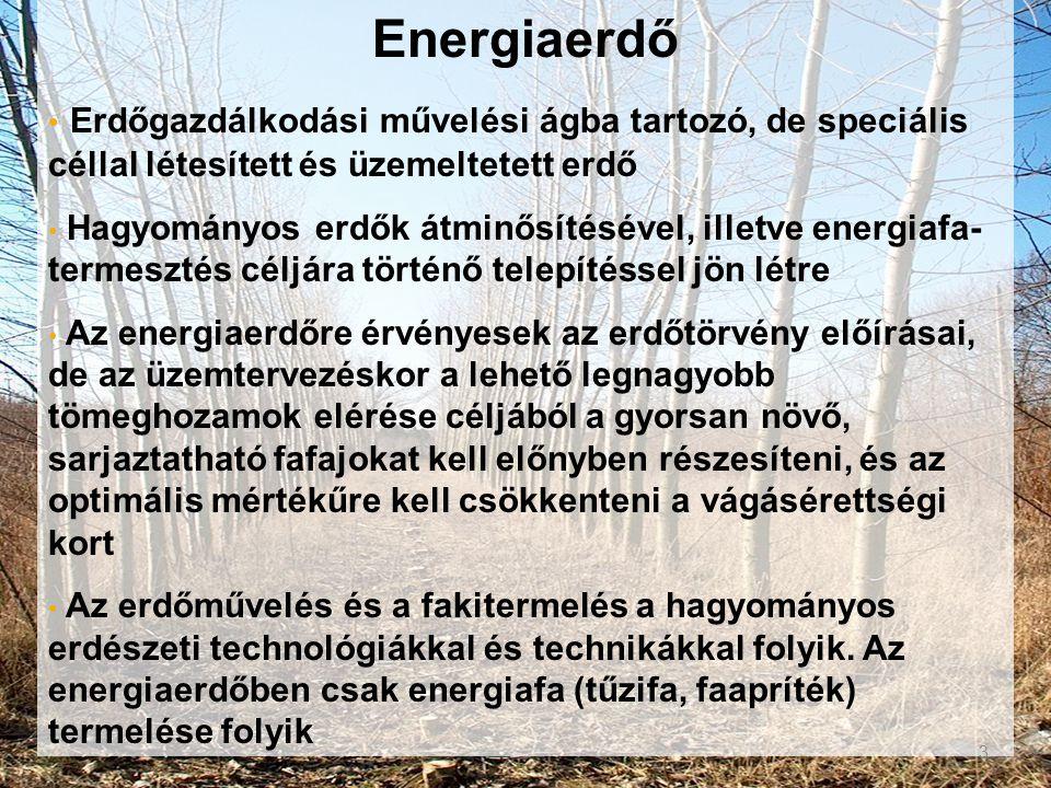 Energiaerdő • Erdőgazdálkodási művelési ágba tartozó, de speciális céllal létesített és üzemeltetett erdő • Hagyományos erdők átminősítésével, illetve
