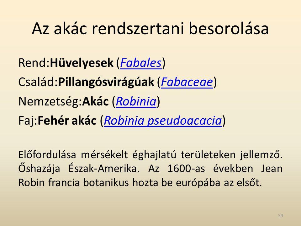 Az akác rendszertani besorolása Rend:Hüvelyesek (Fabales)Fabales Család:Pillangósvirágúak (Fabaceae)Fabaceae Nemzetség:Akác (Robinia)Robinia Faj:Fehér