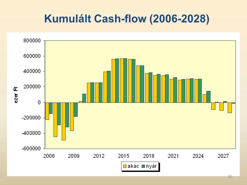 Kumulált Cash-flow (2006-2028) 49