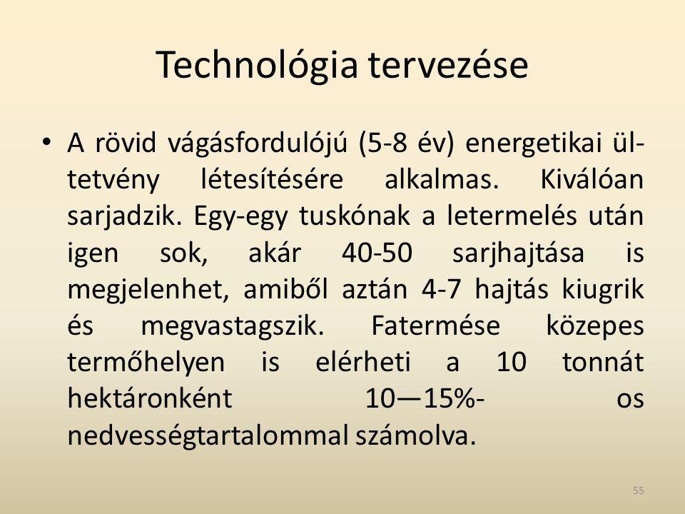 Technológia tervezése • A rövid vágásfordulójú (5-8 év) energetikai ül tetvény létesítésére alkalmas. Kiválóan sarjadzik. Egy-egy tuskónak a letermel