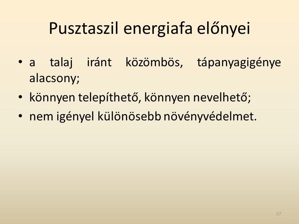 Pusztaszil energiafa előnyei • a talaj iránt közömbös, tápanyagigénye alacsony; • könnyen telepíthető, könnyen nevelhető; • nem igényel különösebb növ