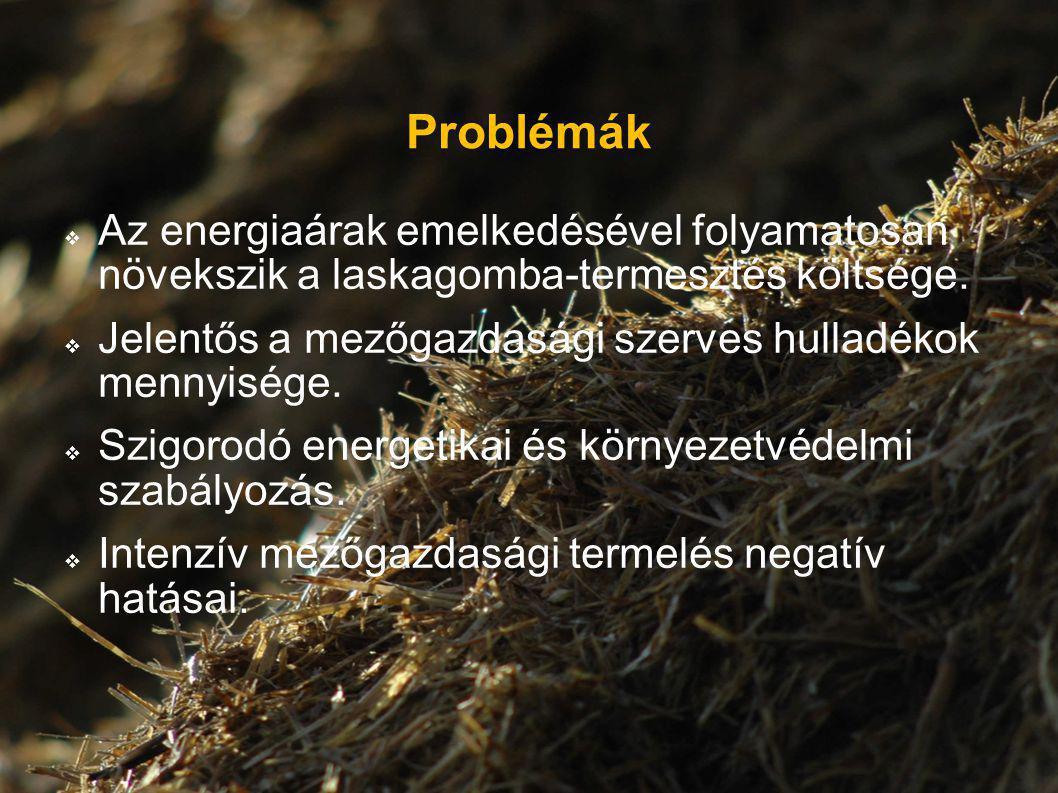 Problémák  Az energiaárak emelkedésével folyamatosan növekszik a laskagomba-termesztés költsége.  Jelentős a mezőgazdasági szerves hulladékok mennyi