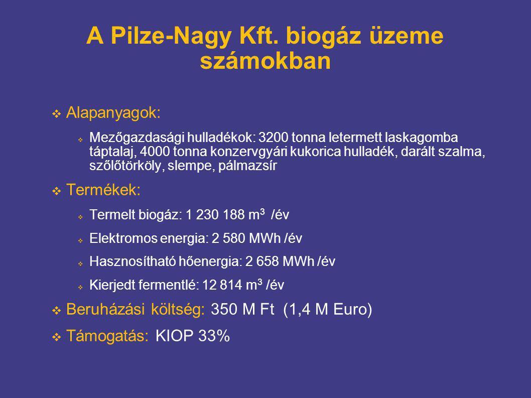 A Pilze-Nagy Kft. biogáz üzeme számokban  Alapanyagok:  Mezőgazdasági hulladékok: 3200 tonna letermett laskagomba táptalaj, 4000 tonna konzervgyári