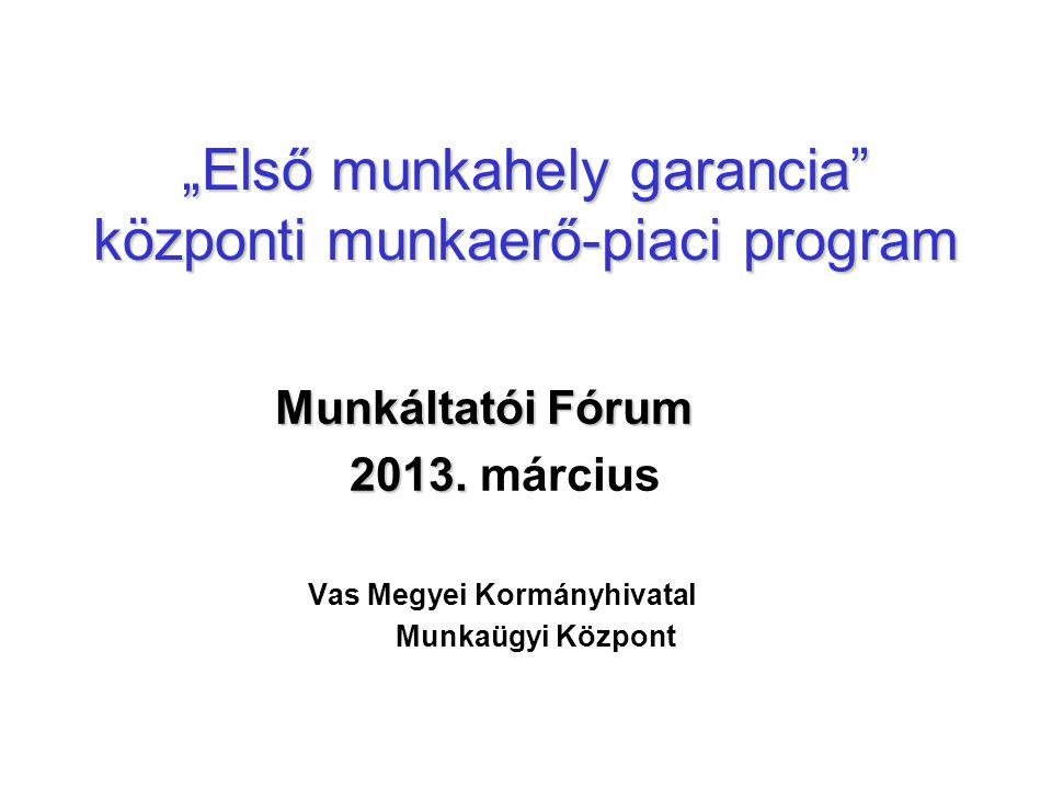 """""""Első munkahely garancia központi munkaerő-piaci program Munkáltatói Fórum 2013."""
