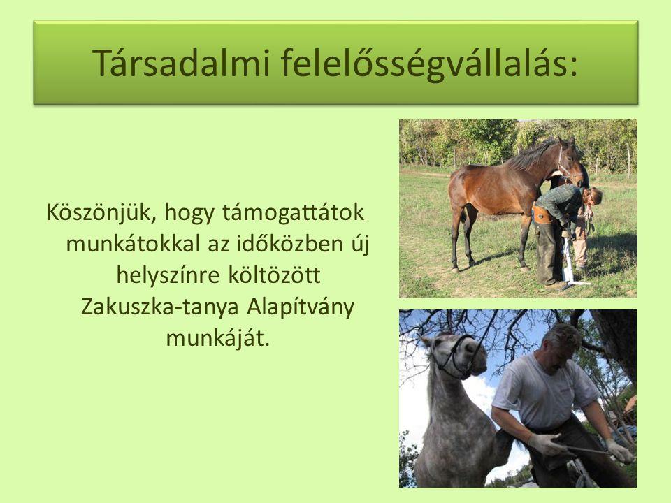 Társadalmi felelősségvállalás: Köszönjük, hogy támogattátok munkátokkal az időközben új helyszínre költözött Zakuszka-tanya Alapítvány munkáját.