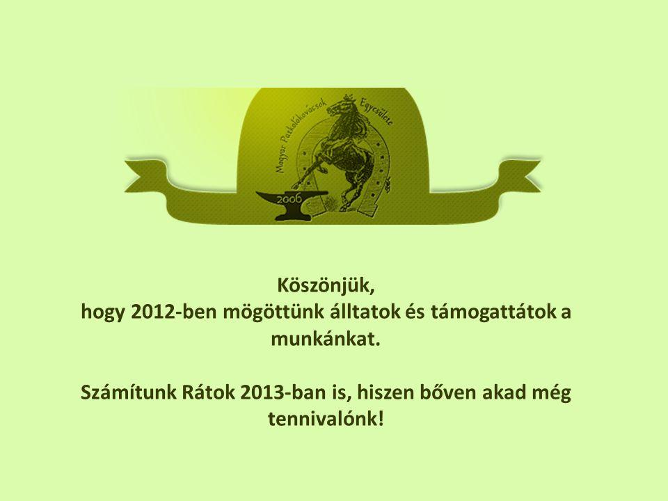 Köszönjük, hogy 2012-ben mögöttünk álltatok és támogattátok a munkánkat.