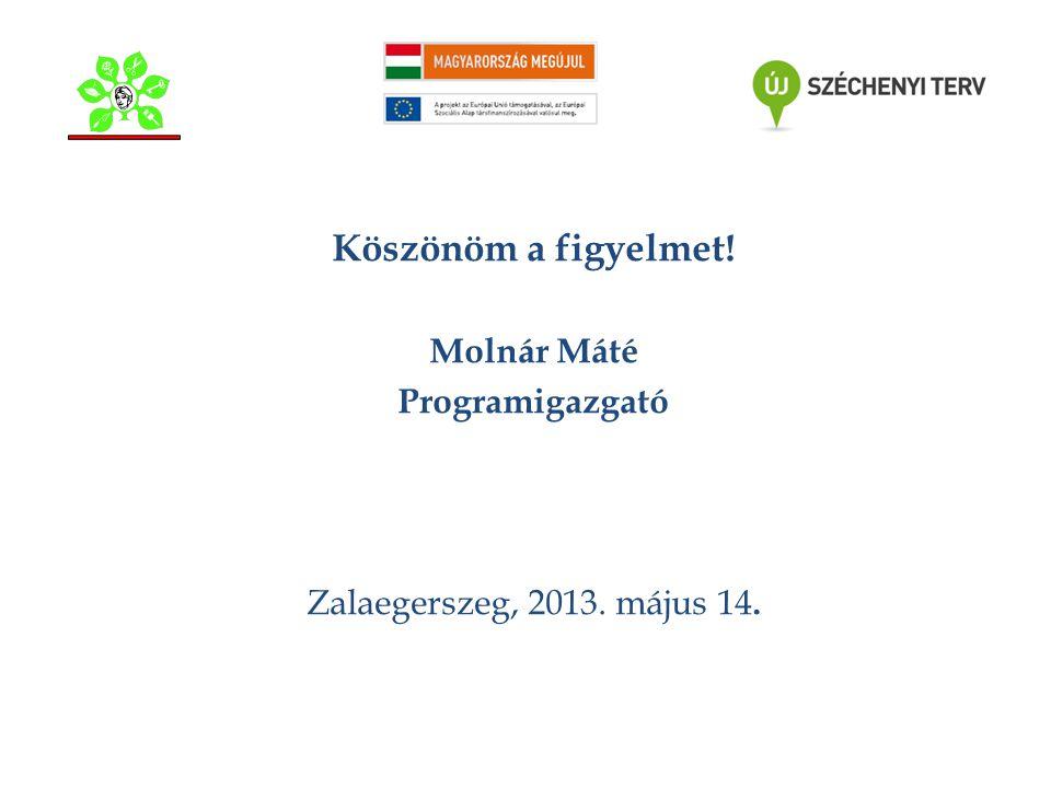 Köszönöm a figyelmet! Molnár Máté Programigazgató Zalaegerszeg, 2013. május 14.