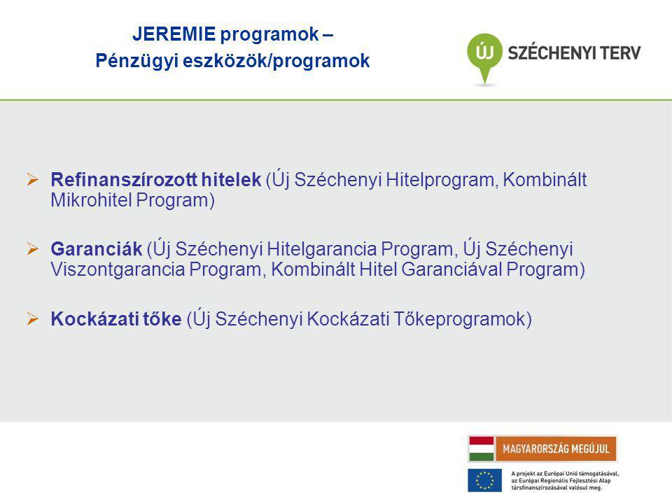  Refinanszírozott hitelek (Új Széchenyi Hitelprogram, Kombinált Mikrohitel Program)  Garanciák (Új Széchenyi Hitelgarancia Program, Új Széchenyi Viszontgarancia Program, Kombinált Hitel Garanciával Program)  Kockázati tőke (Új Széchenyi Kockázati Tőkeprogramok) JEREMIE programok – Pénzügyi eszközök/programok