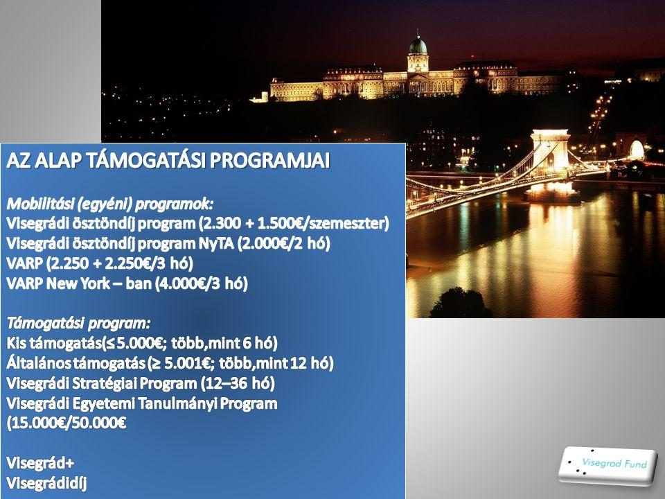 ÁLTALÁNOS TÁMOGATÁSOK (Standard Grants)  5.001€- nál több  max.