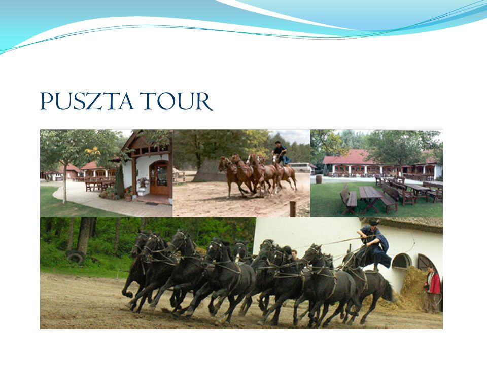 PUSZTA TOUR