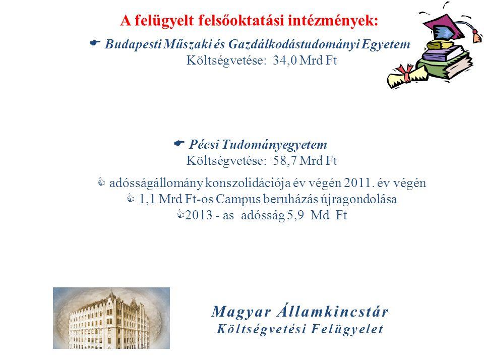 Magyar Államkincstár Költségvetési Felügyelet A felügyelt felsőoktatási intézmények:  Budapesti Műszaki és Gazdálkodástudományi Egyetem Költségvetése