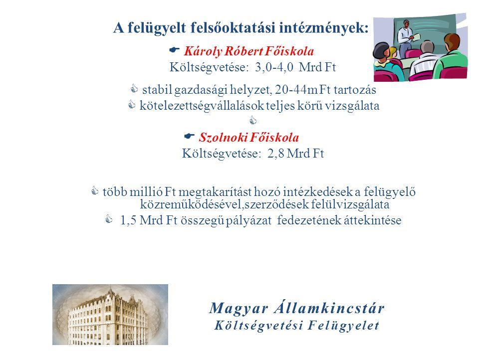 Magyar Államkincstár Költségvetési Felügyelet A felügyelt felsőoktatási intézmények:  Károly Róbert Főiskola Költségvetése: 3,0-4,0 Mrd Ft  stabil g