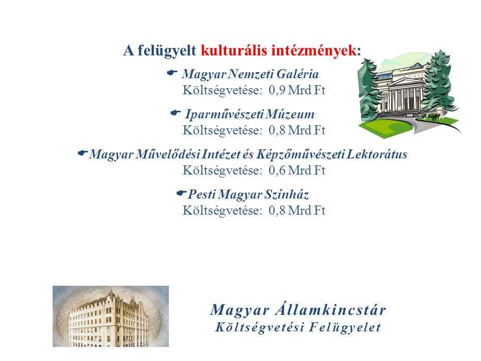 Magyar Államkincstár Költségvetési Felügyelet A felügyelt kulturális intézmények:  Magyar Nemzeti Galéria Költségvetése: 0,9 Mrd Ft  Iparművészeti M