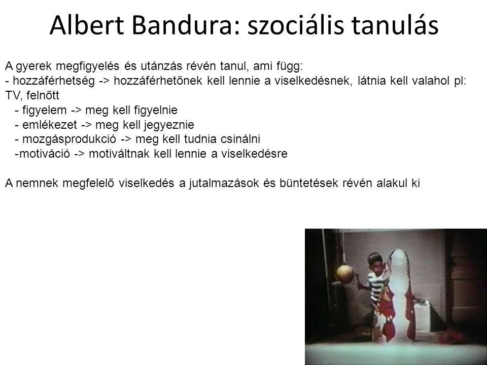 Albert Bandura: szociális tanulás A gyerek megfigyelés és utánzás révén tanul, ami függ: - hozzáférhetség -> hozzáférhetőnek kell lennie a viselkedésnek, látnia kell valahol pl: TV, felnőtt - figyelem -> meg kell figyelnie - emlékezet -> meg kell jegyeznie - mozgásprodukció -> meg kell tudnia csinálni -motiváció -> motiváltnak kell lennie a viselkedésre A nemnek megfelelő viselkedés a jutalmazások és büntetések révén alakul ki