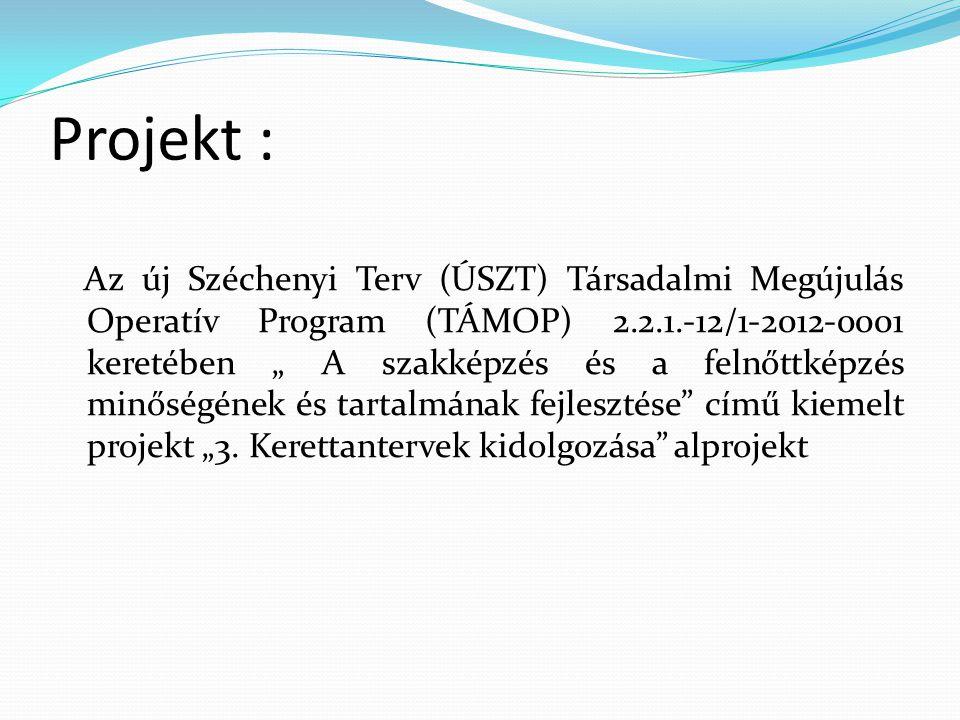 """Projekt : Az új Széchenyi Terv (ÚSZT) Társadalmi Megújulás Operatív Program (TÁMOP) 2.2.1.-12/1-2012-0001 keretében """" A szakképzés és a felnőttképzés"""