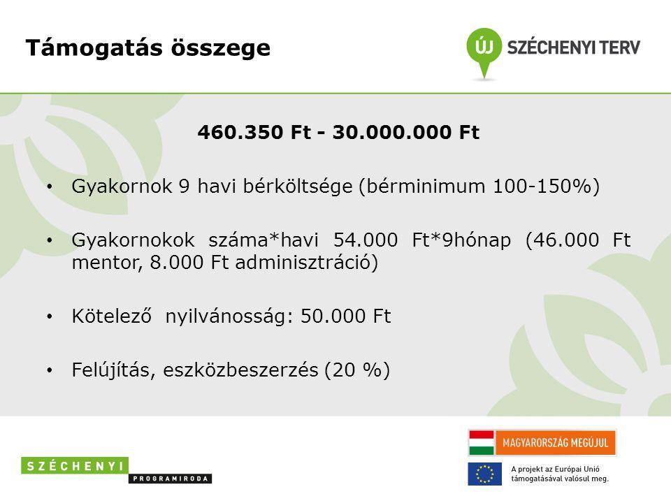 Támogatás összege 460.350 Ft - 30.000.000 Ft • Gyakornok 9 havi bérköltsége (bérminimum 100-150%) • Gyakornokok száma*havi 54.000 Ft*9hónap (46.000 Ft mentor, 8.000 Ft adminisztráció) • Kötelező nyilvánosság: 50.000 Ft • Felújítás, eszközbeszerzés (20 %)