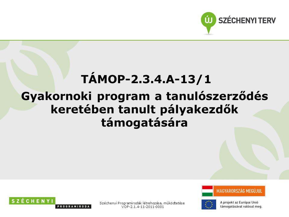 TÁMOP-2.3.4.A-13/1 Gyakornoki program a tanulószerződés keretében tanult pályakezdők támogatására Széchenyi Programirodák létrehozása, működtetése VOP-2.1.4-11-2011-0001