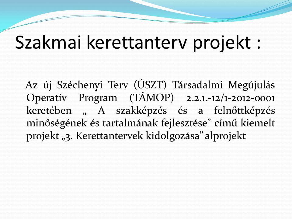 Fejlesztés célja: • Új szakképzési kerettantervek készítése • Lektorálás utáni tartalomfejlesztő szakértői tevékenység • Új szakképzési kerettantervek esetében a nem rendszerszintű módosítások átvezetésének biztosítása a projekt szakmai zárásáig folyamatosan