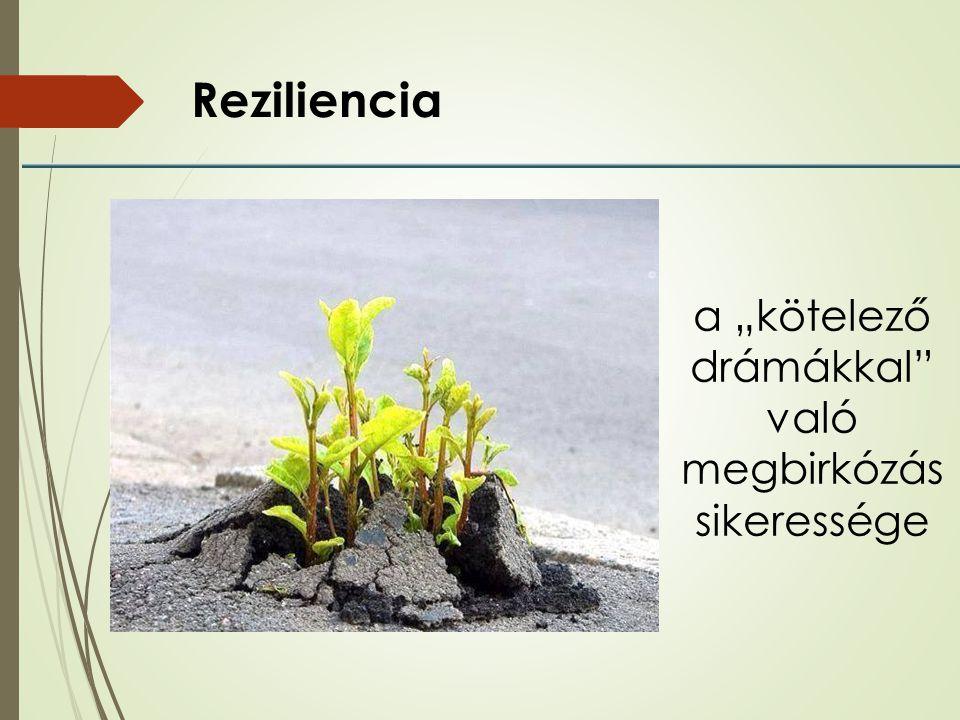 Reziliencia összetevői Rezisztencia és inercia, képlékenység és stabilitás egy időben (rugalmas ellenállóképesség)