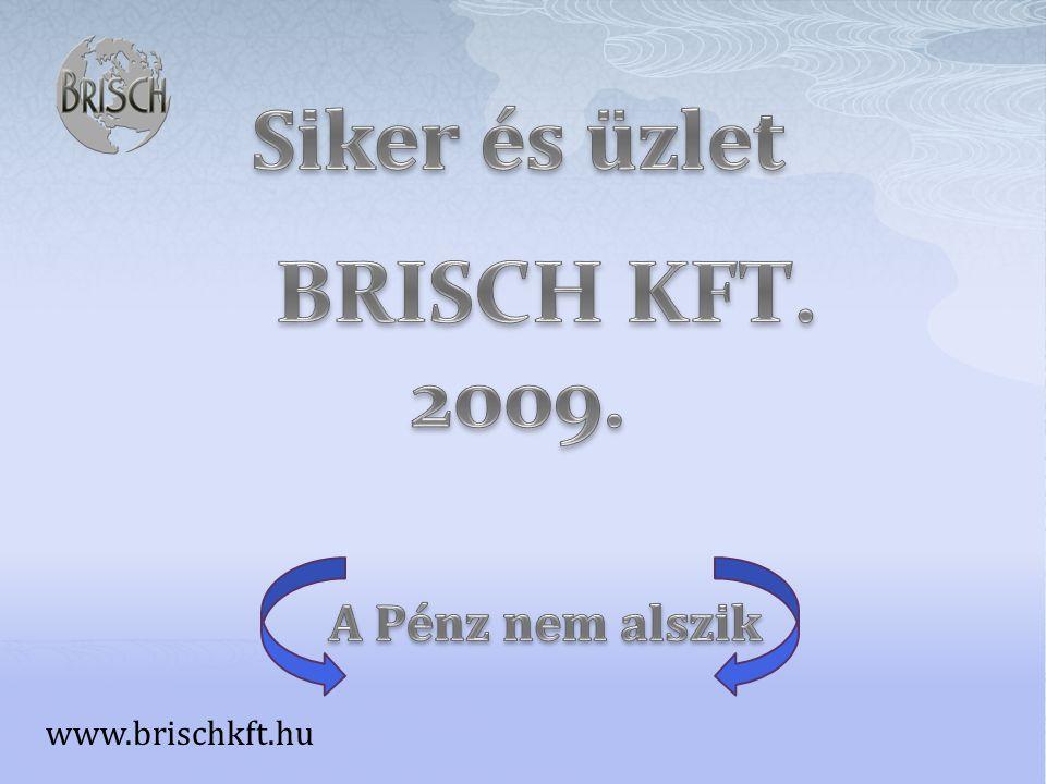 www.brischkft.hu