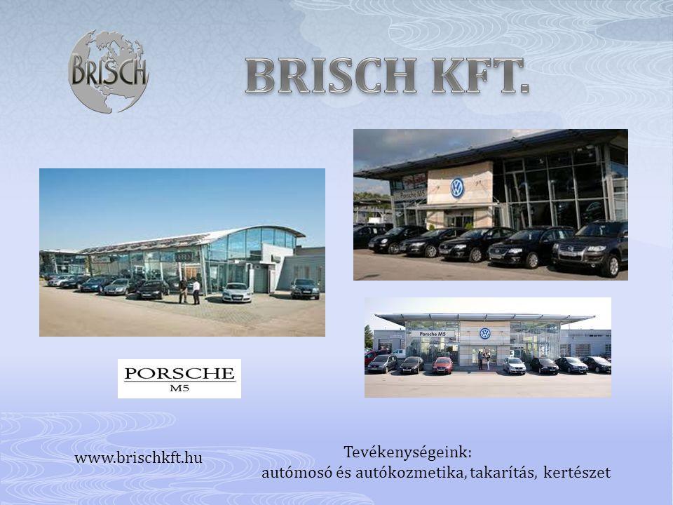 Tevékenységeink: autómosó és autókozmetika, takarítás, kertészet www.brischkft.hu