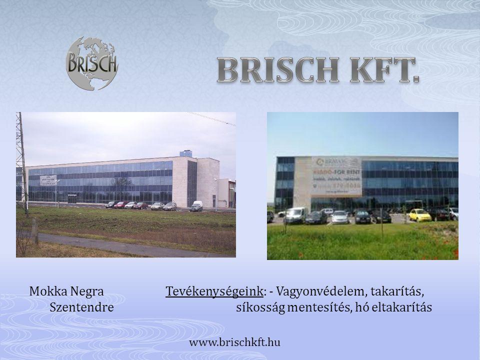 Mokka Negra Tevékenységeink: - Vagyonvédelem, takarítás, Szentendre síkosság mentesítés, hó eltakarítás www.brischkft.hu