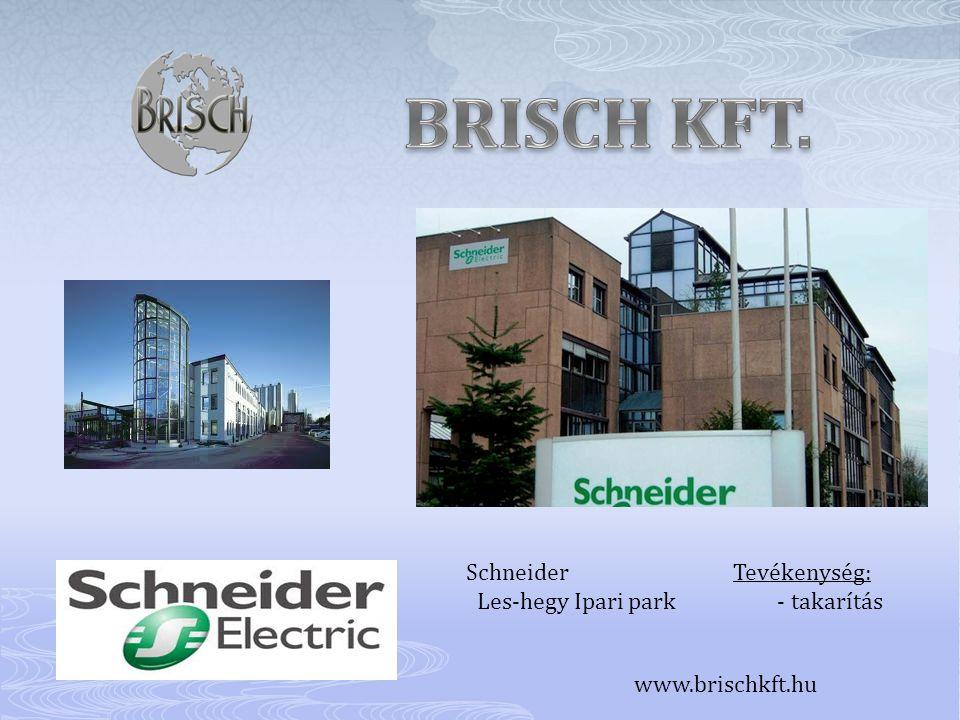 Schneider Tevékenység: Les-hegy Ipari park - takarítás www.brischkft.hu
