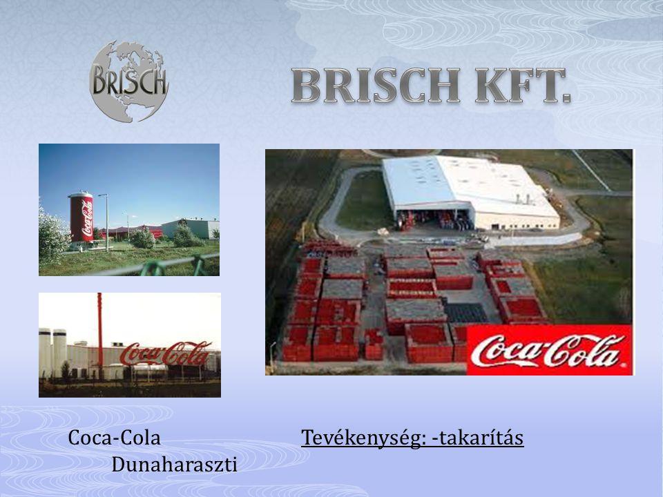 Coca-Cola Tevékenység: -takarítás Dunaharaszti