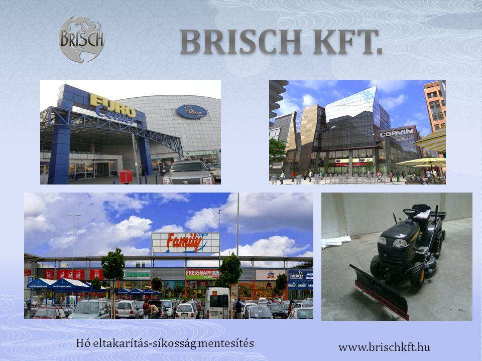 Hó eltakarítás-síkosság mentesítés www.brischkft.hu