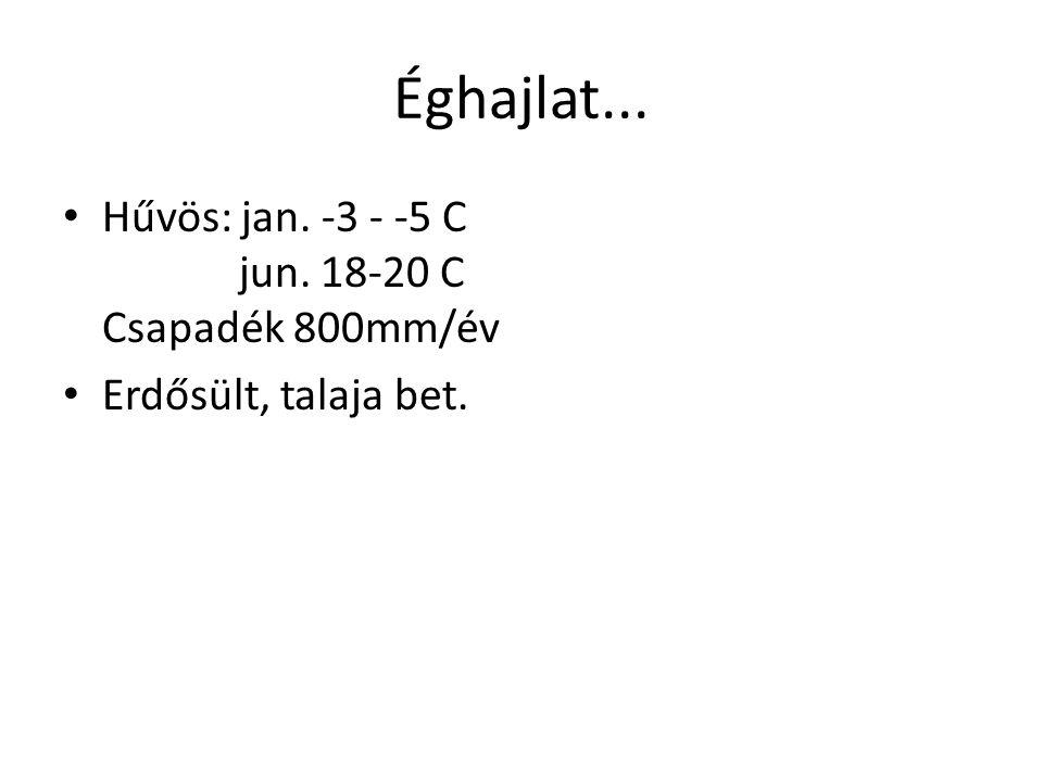Éghajlat... • Hűvös: jan. -3 - -5 C jun. 18-20 C Csapadék 800mm/év • Erdősült, talaja bet.
