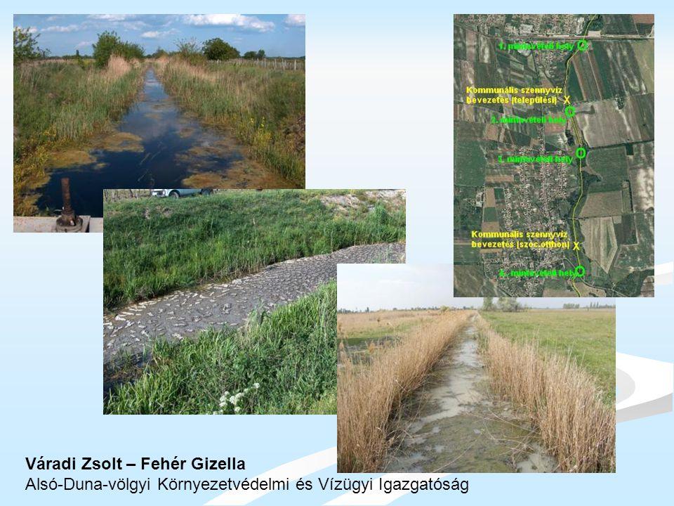 Váradi Zsolt – Fehér Gizella Alsó-Duna-völgyi Környezetvédelmi és Vízügyi Igazgatóság