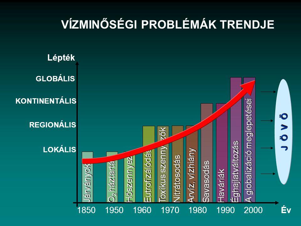 J Ö V Ő Járványok Eutrofizálódás Toxikus szennyezők Éghajlatváltozás O 2 háztartás Arvíz, vízhiány Nitrátosodás Haváriák Hőszennyez. A globalizáció me